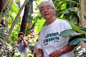 Sister Dorothy Stang, SNDdeN